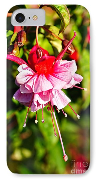Fuchsia Enjoying The Sunshine Phone Case by Kaye Menner