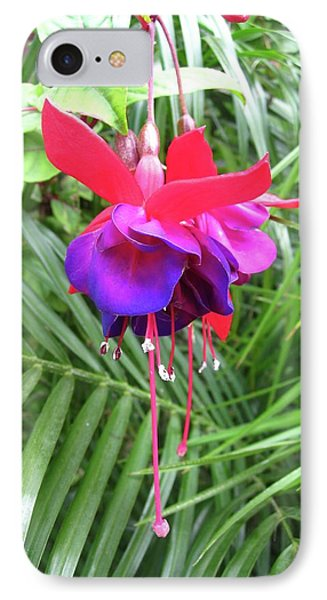 IPhone Case featuring the photograph Fuchsia by Mary Ellen Frazee