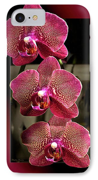 Fuchsia Orchids Oof IPhone Case