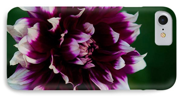 IPhone Case featuring the photograph Fuffled Petals by Cherie Duran