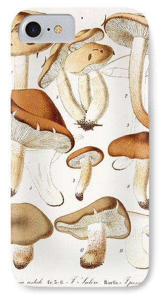 Fungi IPhone Case by Jean-Baptiste Barla