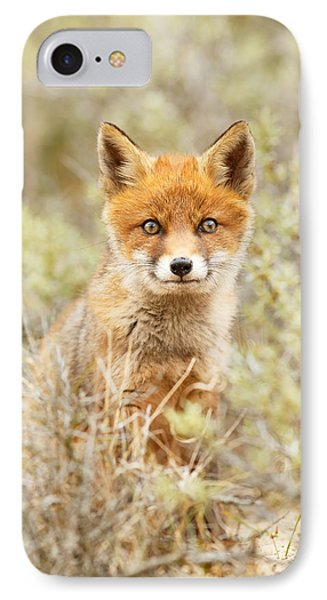 Funny Face Fox IPhone Case