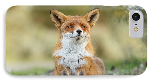 Funny Fox IPhone Case by Roeselien Raimond