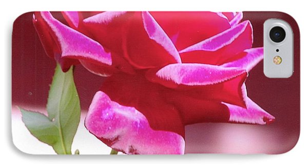 IPhone Case featuring the photograph Fuschia Rose by Rod Ismay