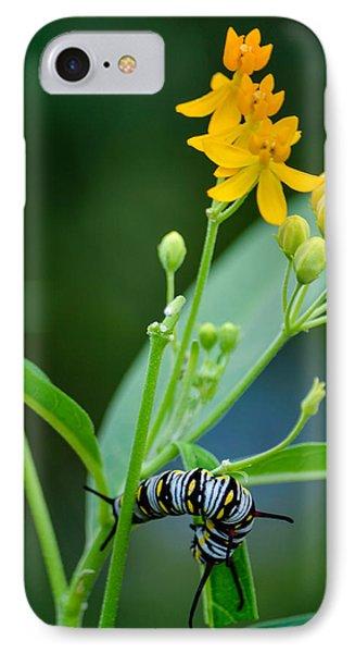 Future Monarch IPhone Case