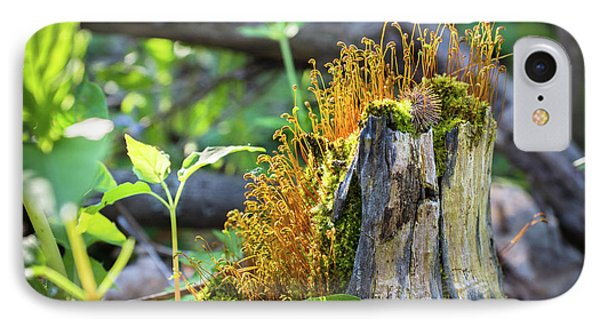IPhone Case featuring the photograph Fuzzy Stump by Bill Pevlor