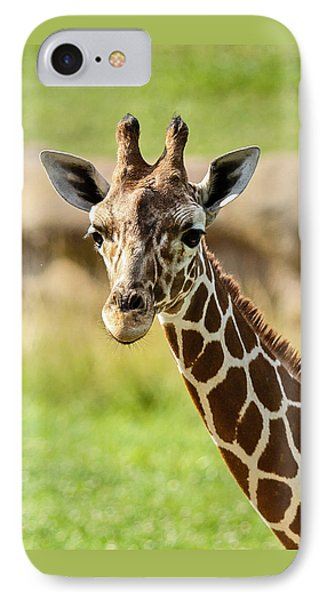 IPhone Case featuring the photograph G Is For Giraffe by John Haldane