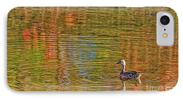 Gadwall In Fall IPhone Case by Gary Holmes