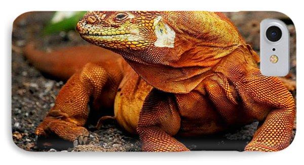Galapagos Iguana IPhone Case