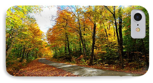 Gale River Road  IPhone Case by Catherine Reusch Daley