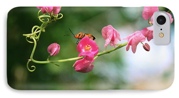 IPhone Case featuring the photograph Garden Bug by Megan Dirsa-DuBois