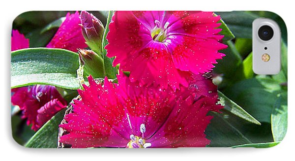 IPhone Case featuring the photograph Garden Delight by Sandi OReilly
