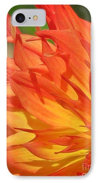 Garden Flame IPhone Case by Autumn Moon