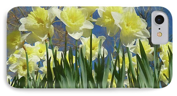 IPhone Case featuring the photograph Garden Of Daffodils by Donna Kennedy