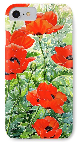 Garden Red Poppies IPhone Case by Christopher Ryland