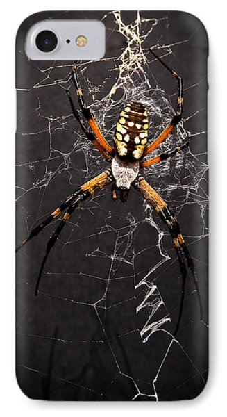 IPhone Case featuring the photograph Garden Spider And Web by Tamyra Ayles