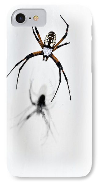 Garden Spider With Shadow Phone Case by Tamyra Ayles