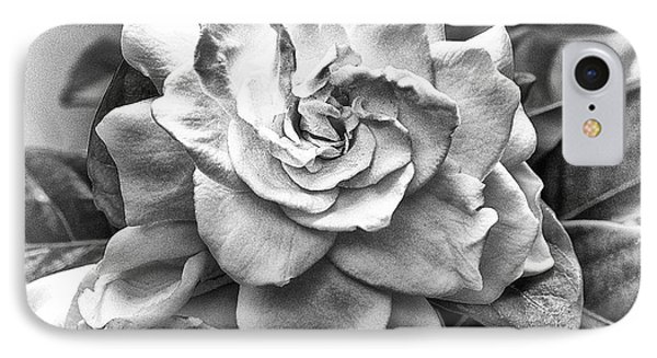 Gardenia Black And White IPhone Case by Barbara Middleton