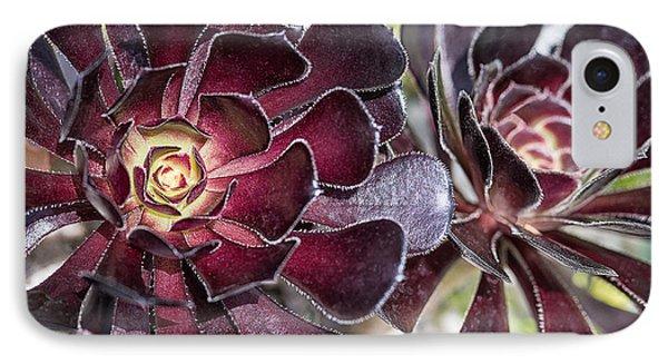 Garnet Cactus IPhone Case