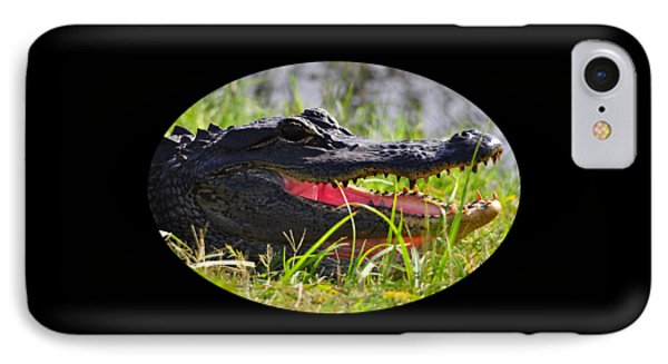 IPhone Case featuring the photograph Gator Grin .png by Al Powell Photography USA
