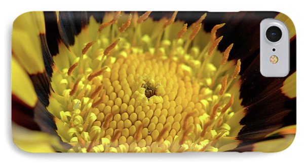 Gazania Macro IPhone Case