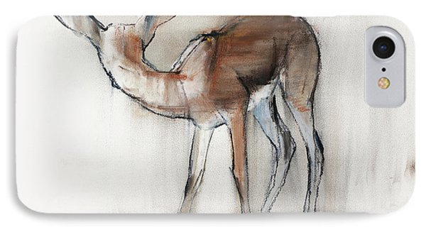 Gazelle Fawn  Arabian Gazelle IPhone Case by Mark Adlington