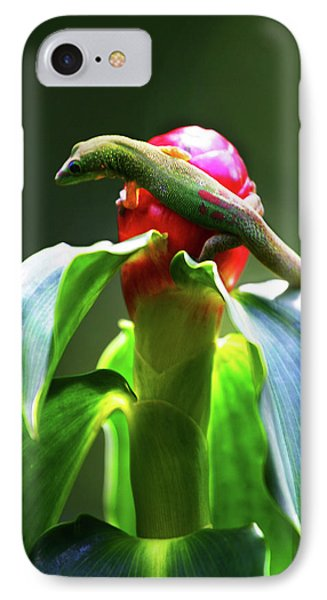 IPhone Case featuring the photograph Gecko #3 by Anthony Jones