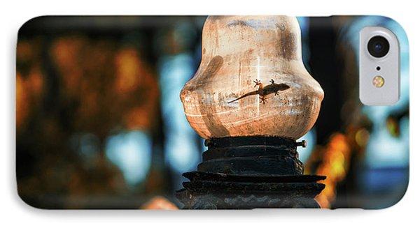 IPhone Case featuring the photograph Gecko In Streetlight Genovese Park Cadiz Spain by Pablo Avanzini