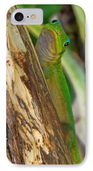 Gecko Up Close IPhone Case by Pamela Walton