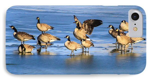 Geese On Ice IPhone Case