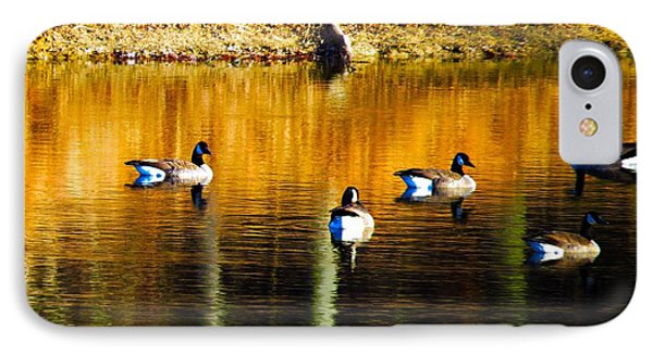 Geese On Lake IPhone Case by Craig Walters