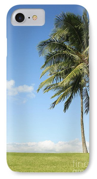 Generic Palm Tree Phone Case by Brandon Tabiolo - Printscapes