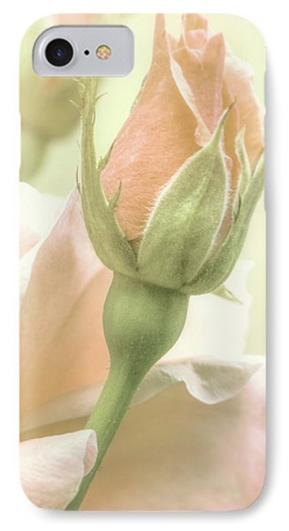 Gentle Roses IPhone Case