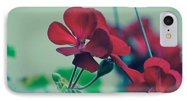 Geraniums IPhone Case by Penni D'Aulerio