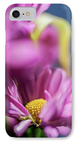Gerber Daisy In Purple IPhone Case