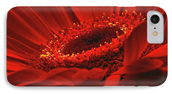 IPhone Case featuring the photograph Gerbera Daisy In Red by Sharon Talson