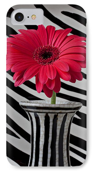 Gerbera Daisy In Striped Vase Phone Case by Garry Gay
