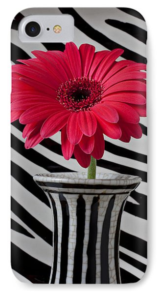 Gerbera Daisy In Striped Vase IPhone Case by Garry Gay