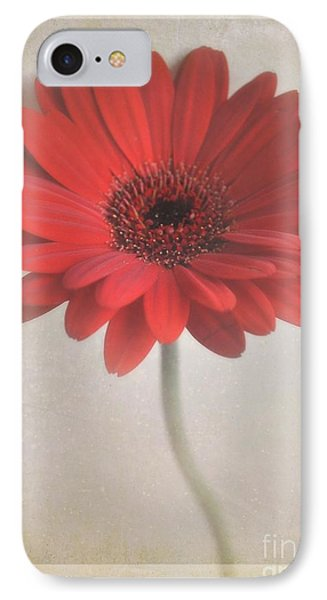 IPhone Case featuring the photograph Gerbera Daisy by Lyn Randle