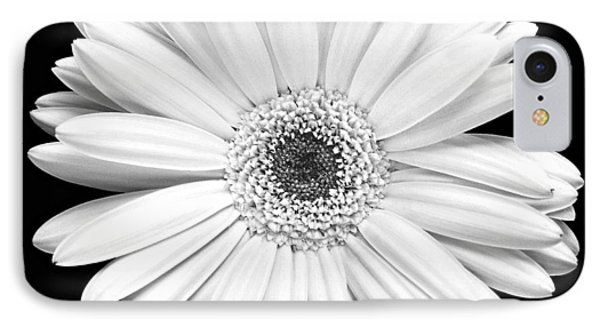 Single Gerbera Daisy IPhone Case by Marilyn Hunt