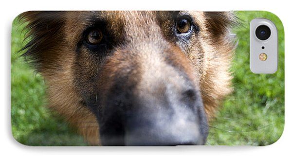 German Shepherd Dog IPhone Case by Fabrizio Troiani