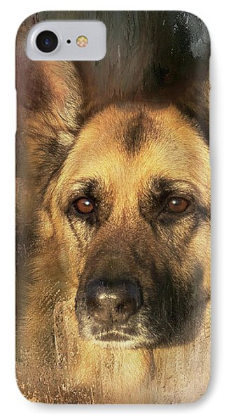 German Shepherd Portrait Color IPhone Case