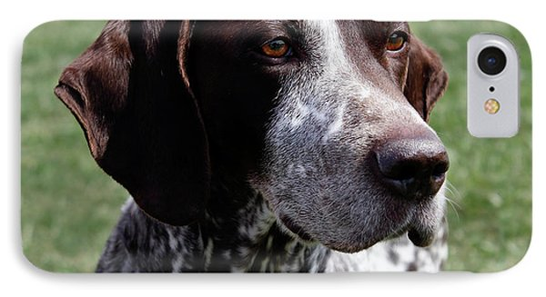 German Shorthaired Pointer  Phone Case by Steven Digman