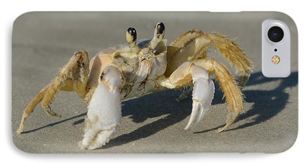 IPhone Case featuring the photograph Ghost Crab by Bradford Martin