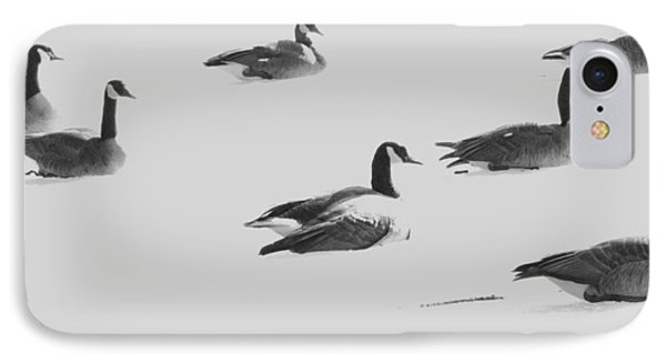 Ghost Geese Over Beverly Hills IPhone Case by Todd Sherlock