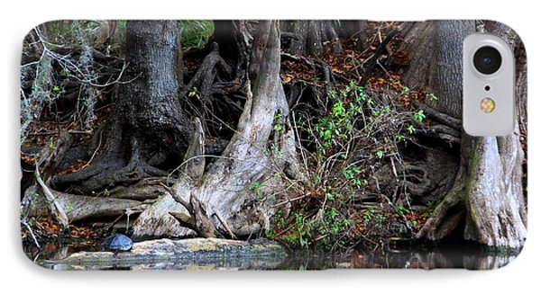 Giant Cypress Knees IPhone Case