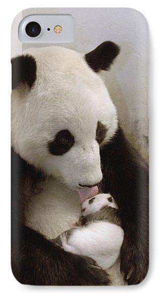 Giant Panda Ailuropoda Melanoleuca Xi Phone Case by Katherine Feng