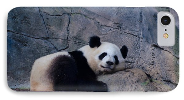 Giant Panda IPhone Case by Donna Brown