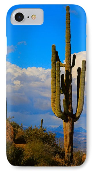 Giant Saguaro In The Southwest Desert  Phone Case by James BO  Insogna