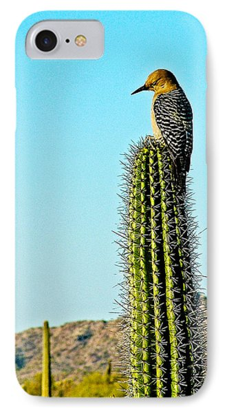 Gila Woodpecker On Saguaro In Organ Pipe Cactus National Monument-arizona IPhone Case by Ruth Hager